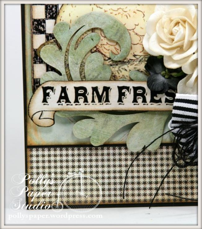 farm chicks card 3