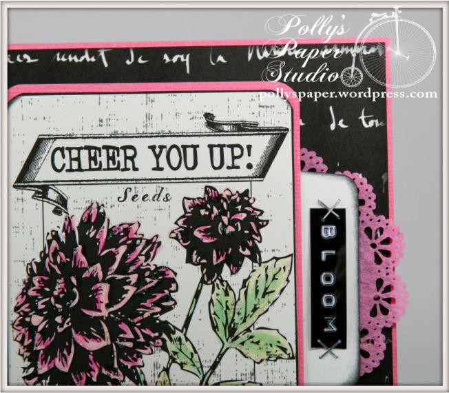 Cheer You Up Card 2